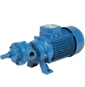 Self Priming Gear Pump